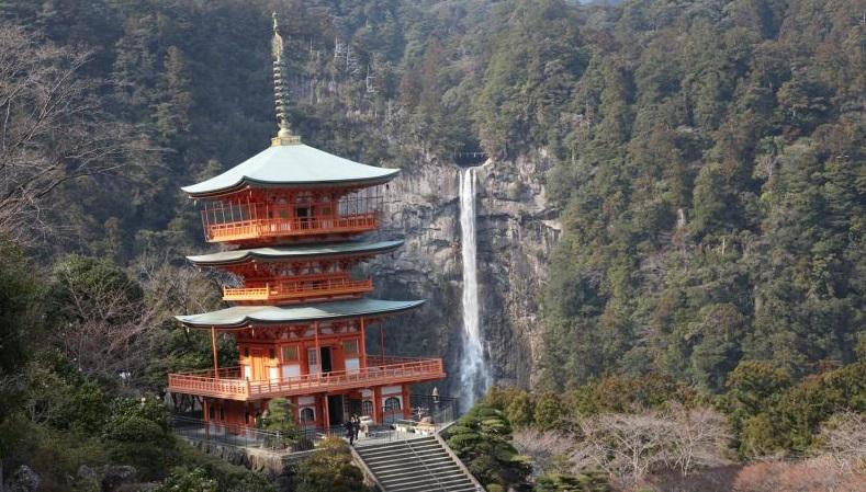 japan-walking-flightsite