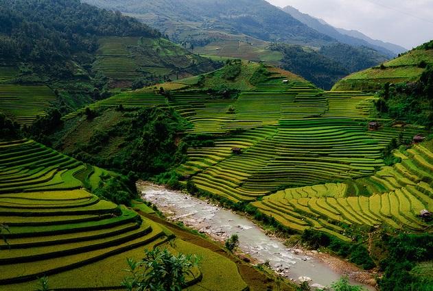 vietnam-flightsite